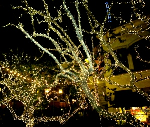 New Year's Eve: one final night to see the holiday lights this year.
