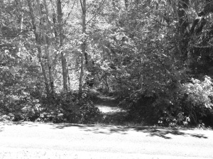 Down this path may be lives lived in black & white with no varying shades of gray.