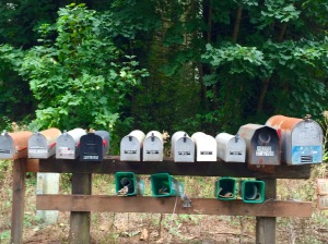 One of the mailbox rows in the area. Like this one, the one at the end of our driveway has no space remaining.